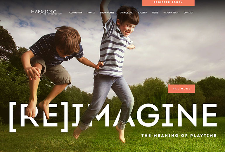 Live in Harmony Website Launched