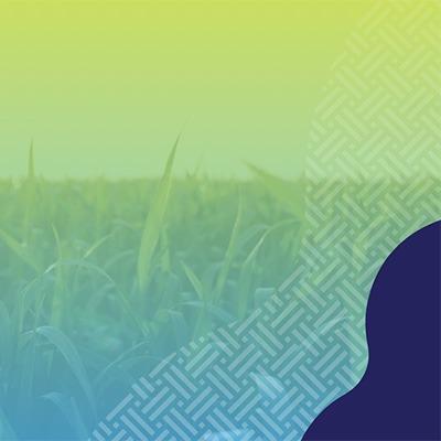 Manitoba Crop Alliance